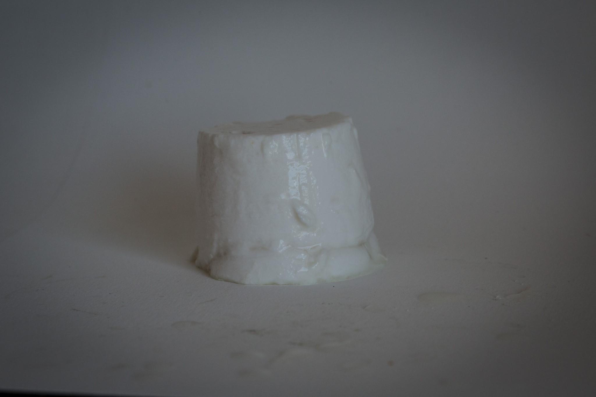 fromage-de-chevre-faisselle-2