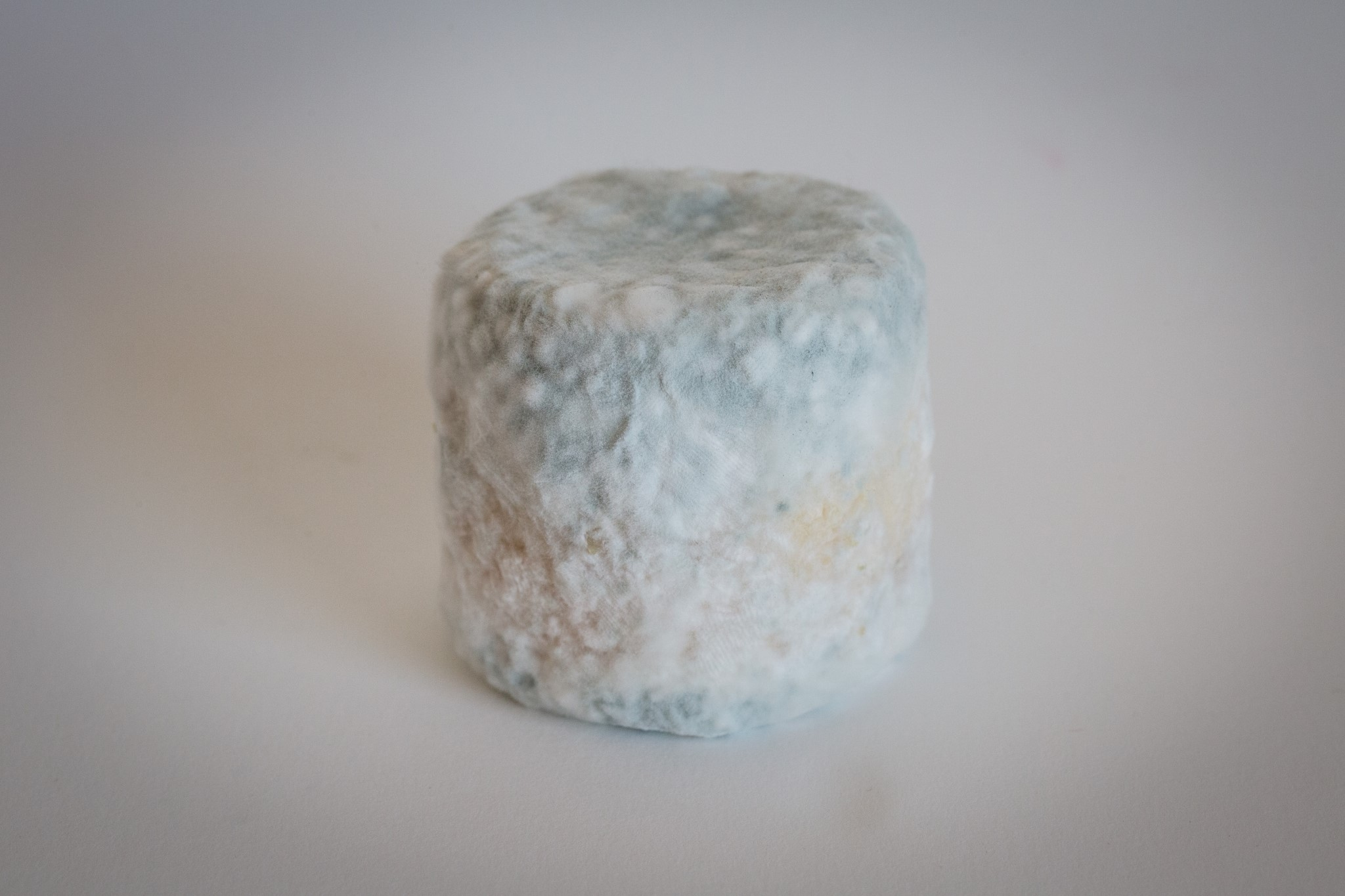 fromage-de-chevre-debut-de-bleu-4