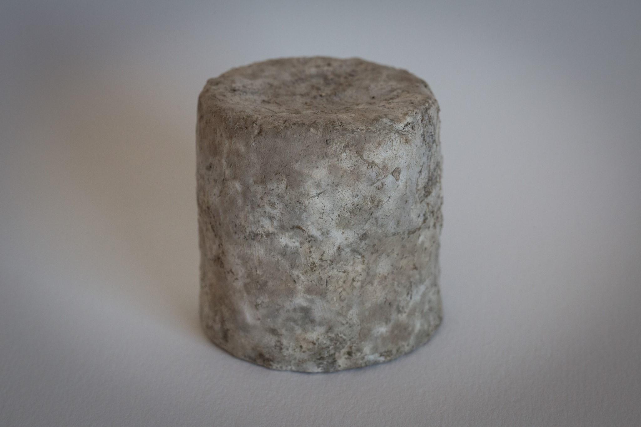 fromage-de-chevre-sec-2