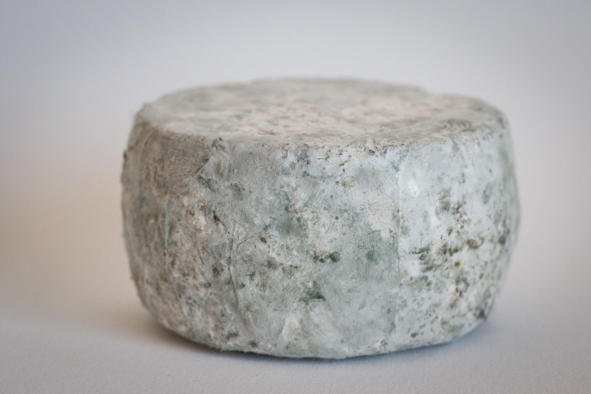 fromage-de-chevre-tommette-2