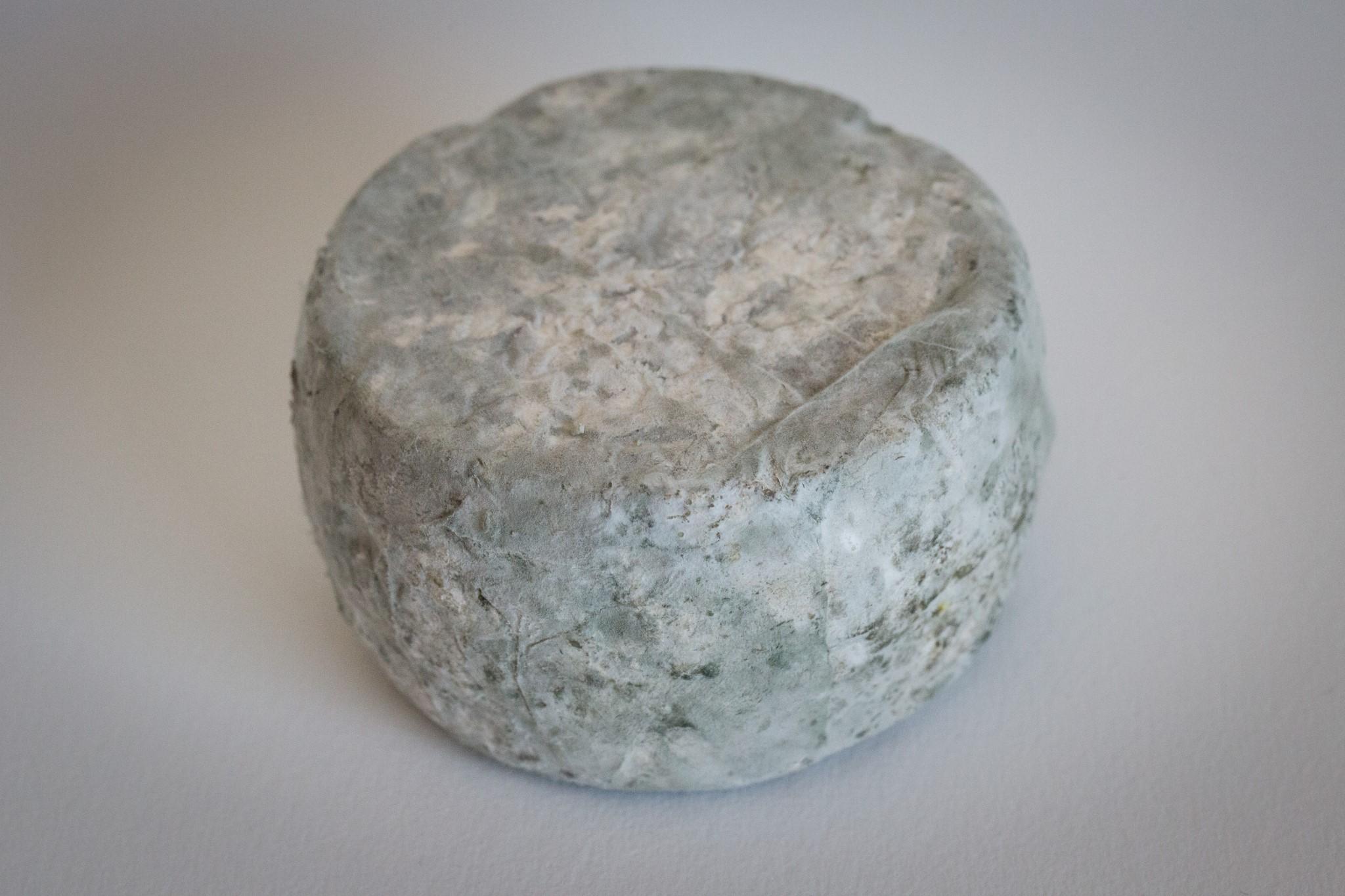 fromage-de-chevre-tommette-4