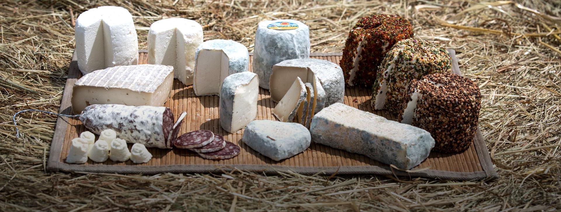 gaec-bien-vivants-fromage-de-chevre-slider-6