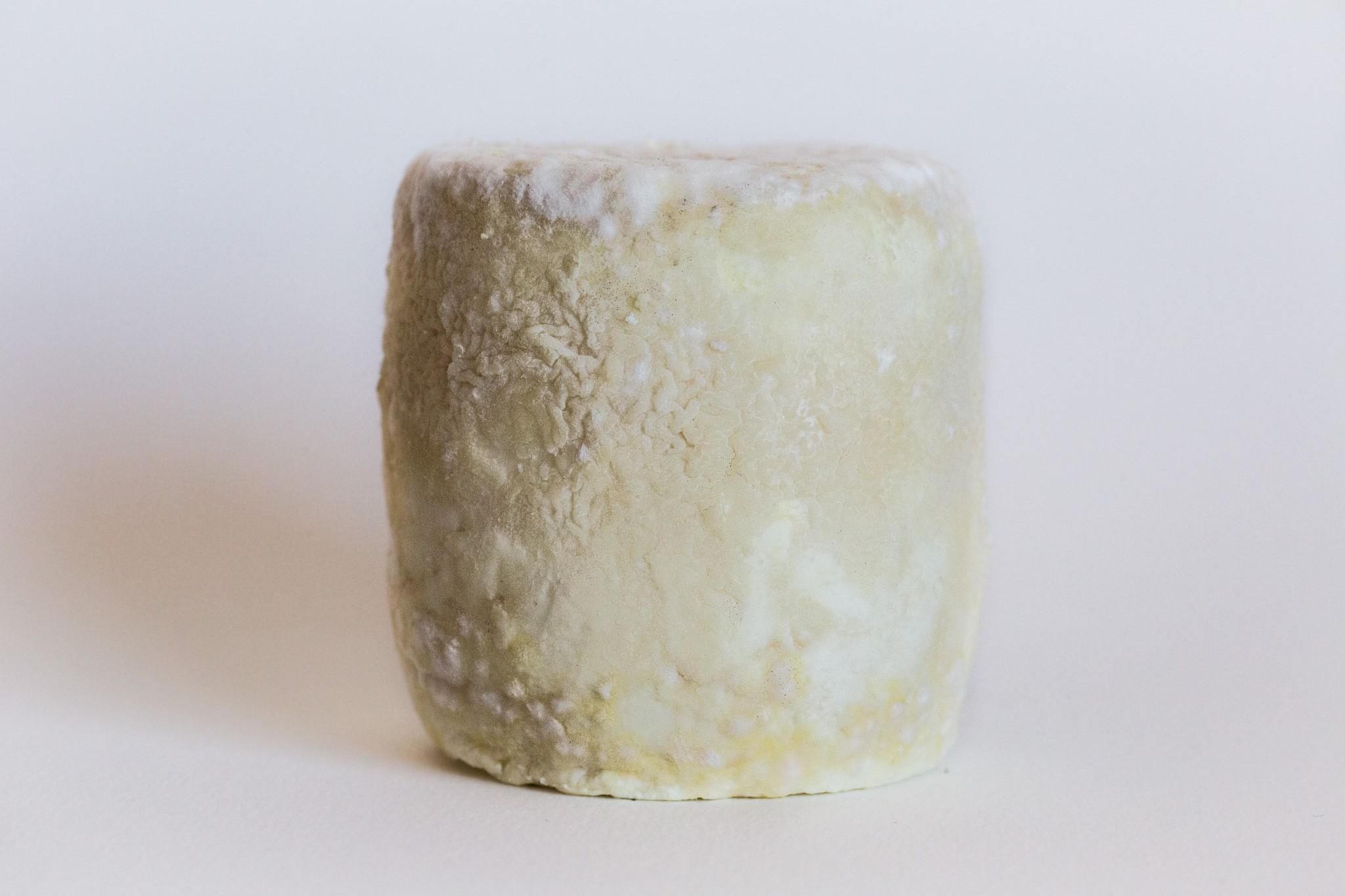 fromage-de-chevre-mi-sec-2
