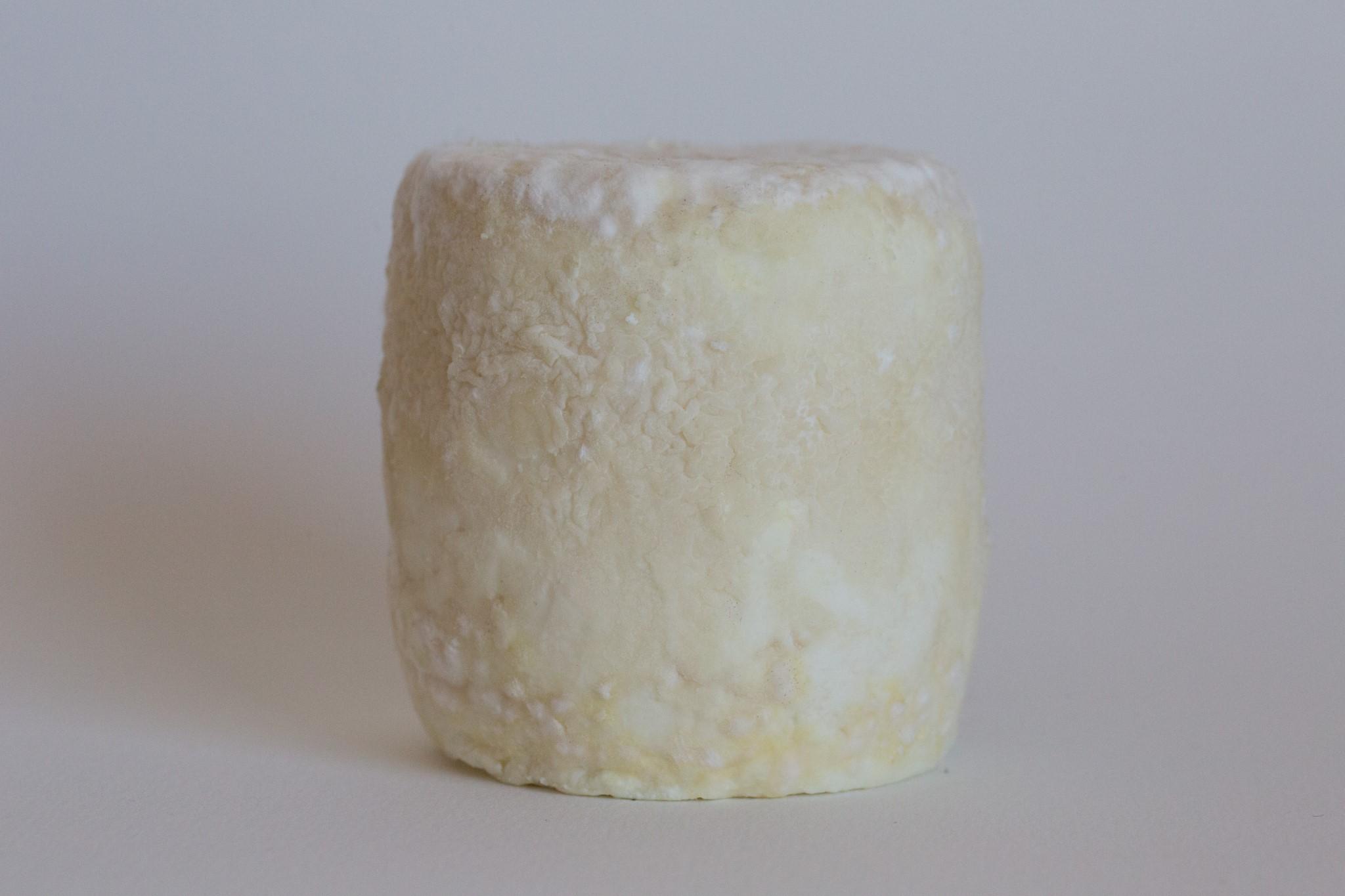 fromage-de-chevre-mi-sec-3