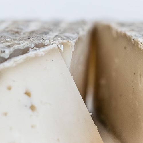 fromage-de-chevre-tomme-2