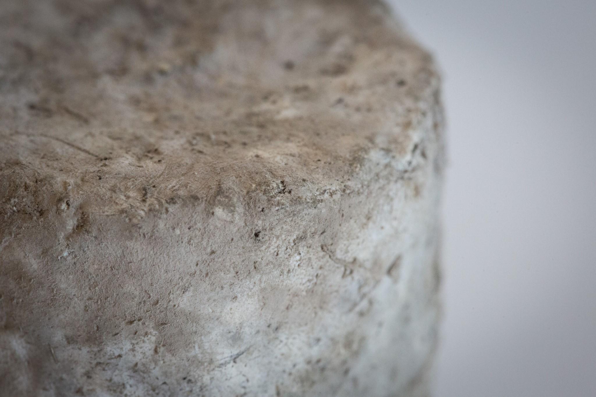 fromage-de-chevre-sec-4